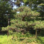 【佐々成政の居城跡を訪ねて】水戸黄門の助さん以外にも名古屋市西区比良には末裔たちが居た